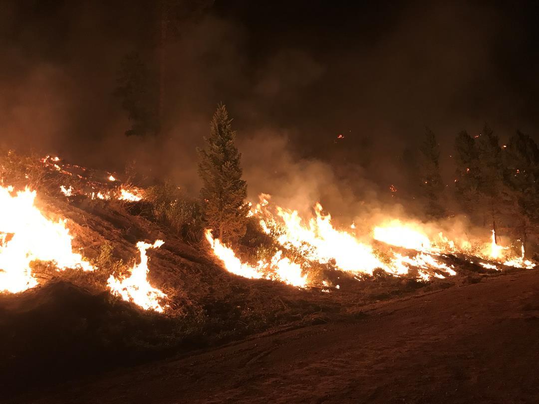 Courtesy: Rice Ridge Fire, Inciweb
