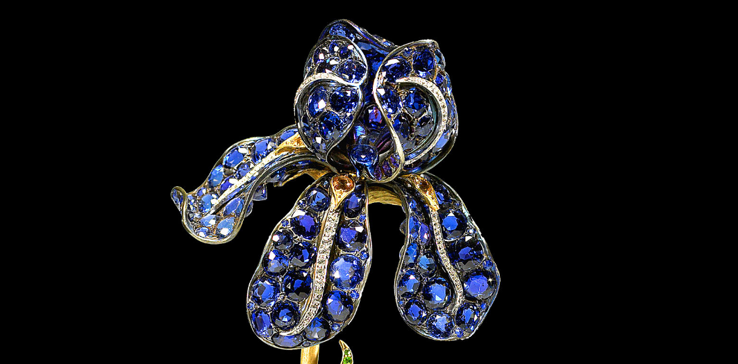 Tiffany Iris Brooch made in 1900 with Yogo Sapphires (source: Wikipedia)