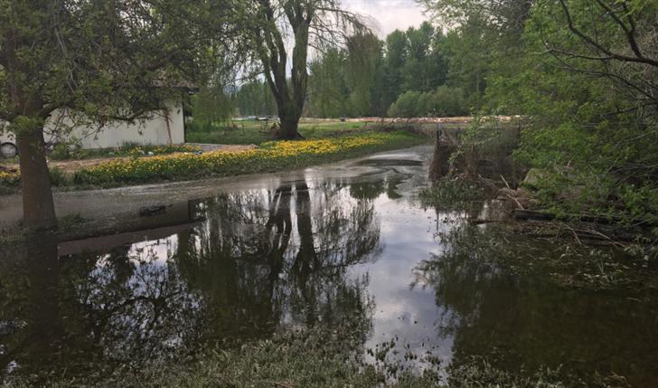 Mallard Way flooding May 17