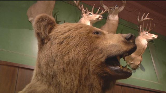Be Bear Aware For Big Game Rifle Season Opening Weekend