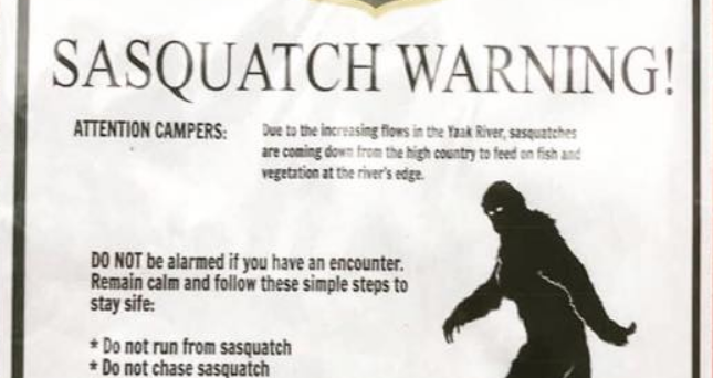 Sasquatch flyer posted summer 2018 in Kootenai National Forest