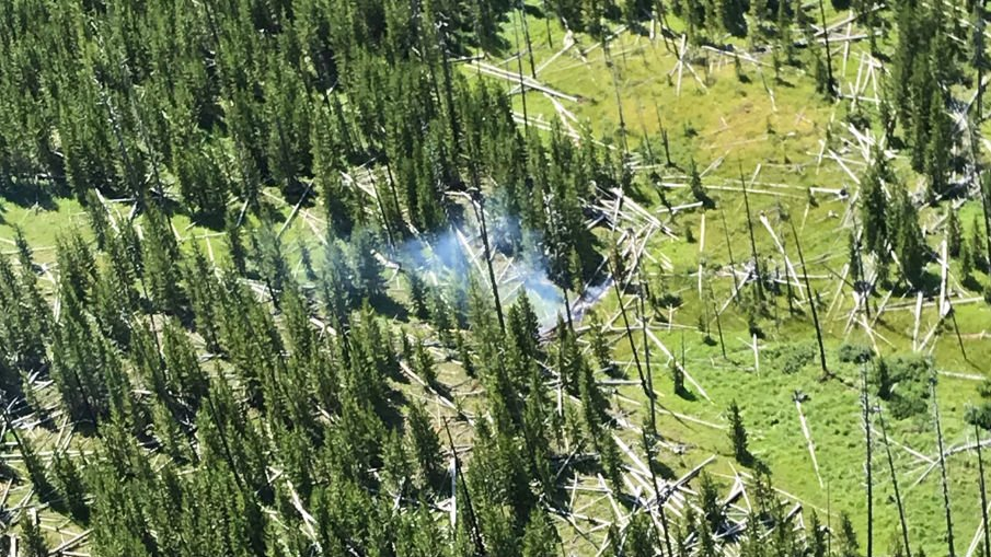 courtesy Yellowstone National Park