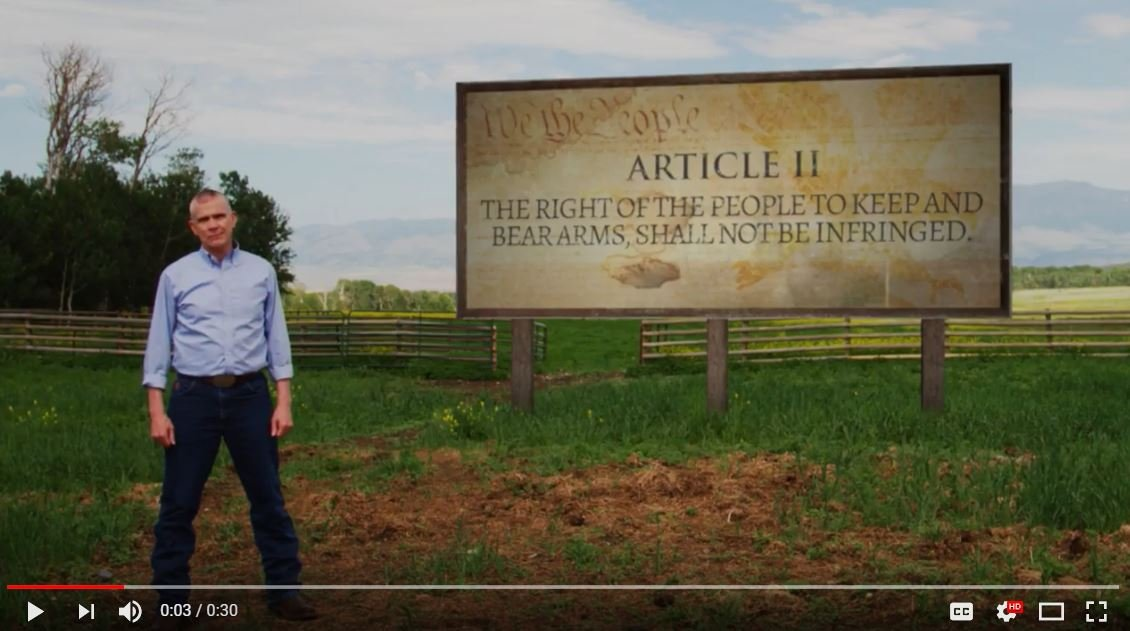 First version of the ad mislabels the Second Amendment as Article II