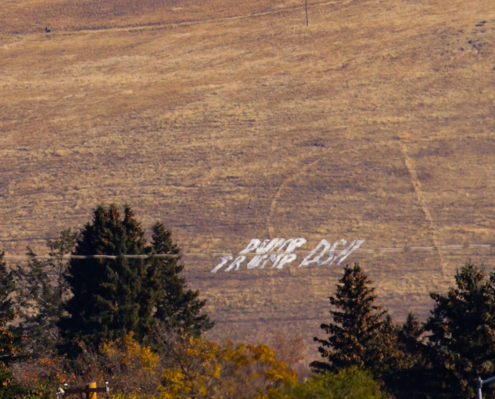 """""""Dump Trump DSA"""" is written on the hillside to welcome President Donald Trump to the Garden City."""